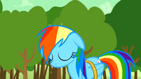 Rainbow Dash's memory is restored S2E02