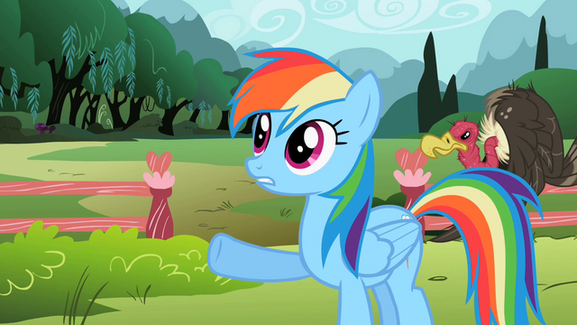 File:Rainbow Dash 'set a few rules' S2E07.png
