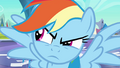 Rainbow Dash looks to the left S3E2.png