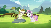 "Sweetie Belle ""I'm sure that's not true"" S7E6"