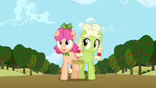 Granny Smith and Apple Rose in the 7 legged race S3E8.png