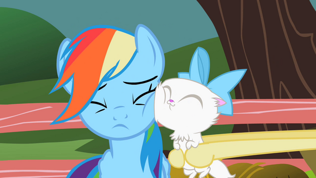 File:Cat's face on Rainbow's face S2E07.png