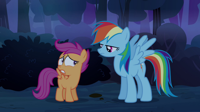 File:Scootaloo looks at Rainbow S3E06.png
