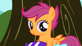 Scootaloo smiling S01E18.png