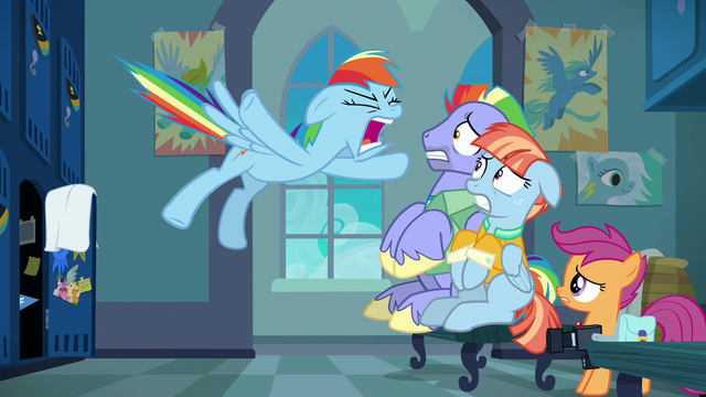 "File:Rainbow Dash shouting ""too much!"" S7E7.png"