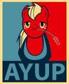 Big mac Eyup.png