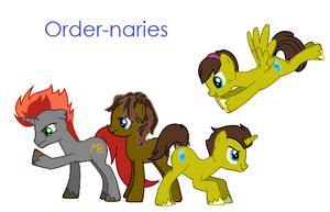 Order-naries Group