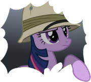 Hiddenpony