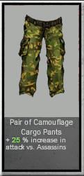 File:Camouflage Cargo Pants.png
