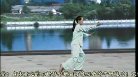 16-Form Yang-Style Taijiquan