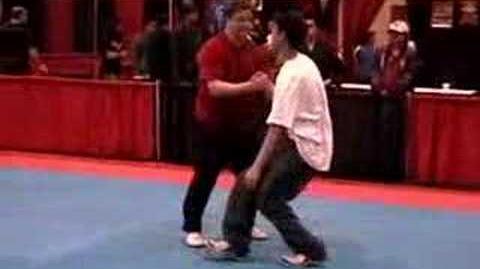 "Tai Chi ~ Martial Applications of ""Brush Knee Push"""