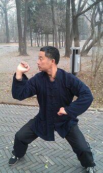 Master zhou baji quan posture