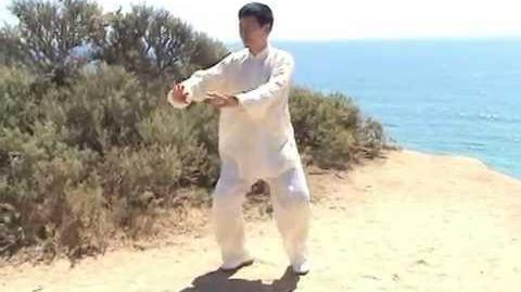 Old Chen Tai Chi Taiji Single Whip - Jesse Tsao