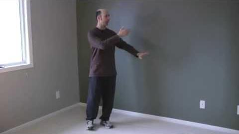 Beginner Tai Chi Clips 5