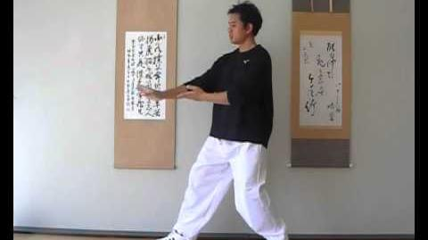 Corporate Tai Chi - Grasping the Sparrow's Tail