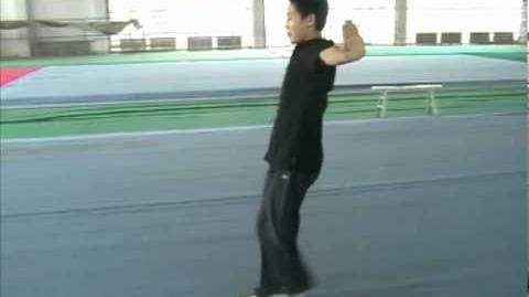 Wushu Front Stretchkick - Zheng Ti Video