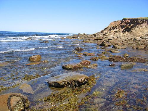 File:Rocky-beach.jpg