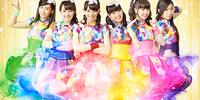 Team Syachihoko