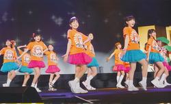 Team Hotaru Ika Promo