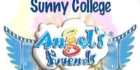 Angel's Friends: Between Dream and Reality