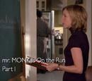 El sr. Monk es un fugitivo