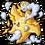 325 Light Starfish BMK