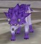 Tiger Purple MFL