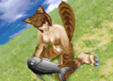 Kittenmr2