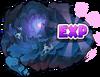EXP Island