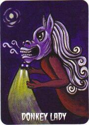 Donkey Lady