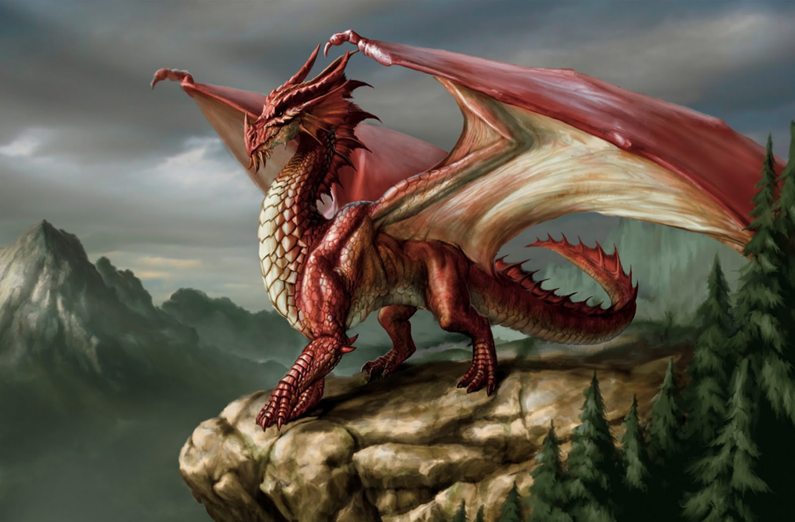 Dragon  Monster Wiki  Fandom Powered By Wikia-2946