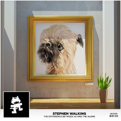 Stephen Walking - The Difference Between Us And The Aliens