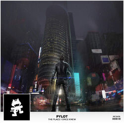 PYLOT - The Place I Once Knew