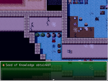 SeedofKnowledge Witchhunt Village Lily's Mansion 2F
