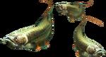 3rdGen-Fish Render 004