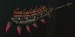 FrontierGen-Great Sword 991 Render 000