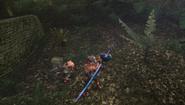 MHFU-Old Jungle Screenshot 020