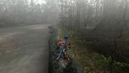 MHFU-Old Jungle Screenshot 023