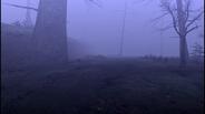 MHF1-Swamp Screenshot 013
