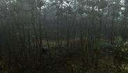 MHFU-Old Jungle Screenshot 040