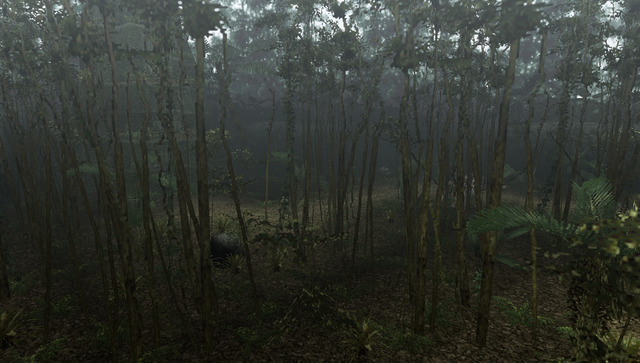 File:MHFU-Old Jungle Screenshot 040.png