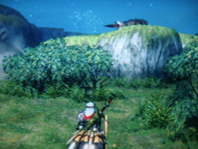 File:Four Horns.JPG