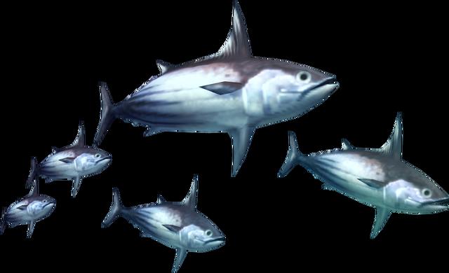 File:3rdGen-Fish Render 008.png