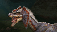 Great Jaggi Intro 3