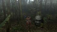 MHFU-Old Jungle Screenshot 021