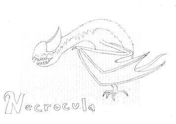 Necrocula