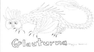Glauturna