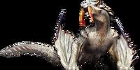 Common Barioth