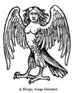 220px-Harpy