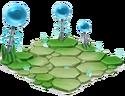 Thunder-Habitat- 2